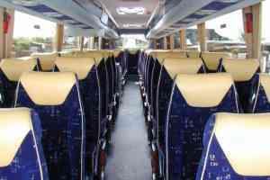 49/53 Seater Executive